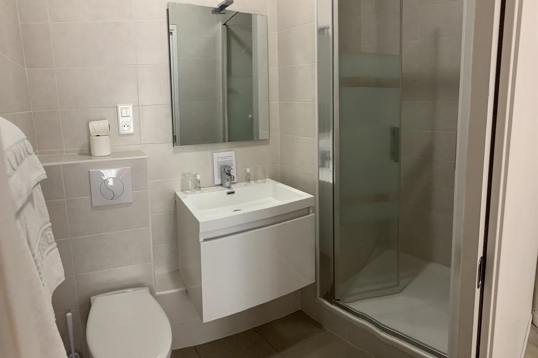 Salle d'eau de chambre avec grand lit